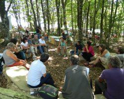 Meeting in the woods - Foresta Modello Montagne Fiorentine