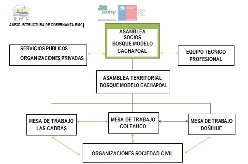 Estructura de gobernanza del Bosque Modelo Cachapoal